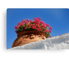 Wall Flowers. Canvas Print