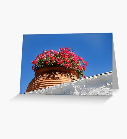 Wall Flowers. Greeting Card