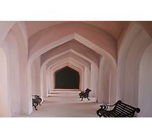 Arches - Amber Fort, Jaipur India Photographic Print