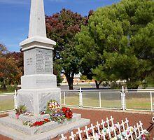 Carisbrook Cenotaph  by Arthur Koole