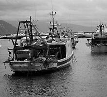 Fishing Boats by Mauro Ippolito