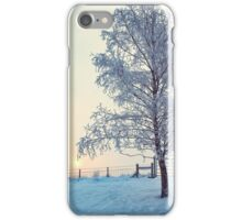Northern Ireland Farm Sunset iPhone Case/Skin