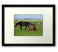 Made in Holland Framed Print
