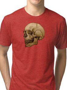 Anatomical Adult Skull Tri-blend T-Shirt