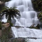 Fainter falls, Victoria, Australia. by Petehamilton