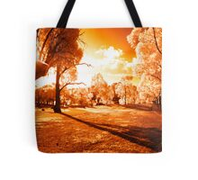 May the Joy of The Light Fill You All Tote Bag