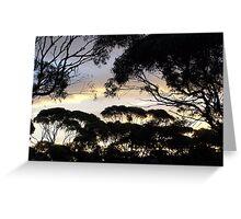 Sunset, Madura Pass, WA Greeting Card