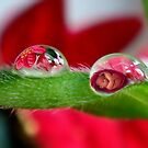Magical droplets by Eugenio