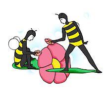 Bee Guys (white) Photographic Print