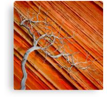 Wood & Stone Canvas Print
