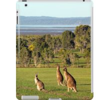 The roos are in the top paddock! iPad Case/Skin