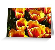 Tulip Time. 1 Greeting Card