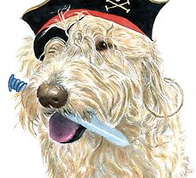 Pirate Labradoodle by Yvonne Carter