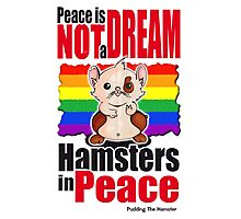Pudding the hamster - Peace is not a dream Photographic Print