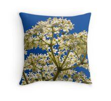 Elder flower Throw Pillow