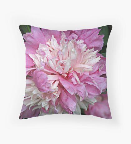 Eye-Popping Pink Throw Pillow