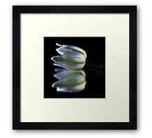 Peaceful Beauty 5 Framed Print