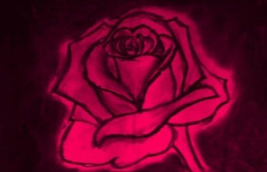 eroica rose sketch by MetaKrissi
