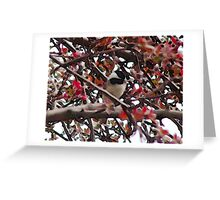 Black Cap Greeting Card