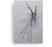 Snow Graphics Canvas Print