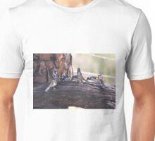 Honey Eater Gallering Unisex T-Shirt
