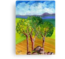 Summer in South Africa.  Canvas Print