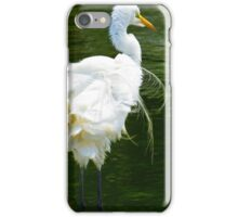 Chinese Egret, Shakin' it's Tail Feathers iPhone Case/Skin