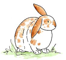 Hoppy Flopsy Bunny by sillybadger