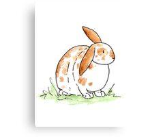 Hoppy Flopsy Bunny Canvas Print