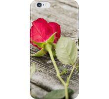 Rose 1 iPhone Case/Skin