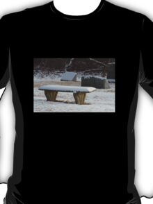 Snow at Rest T-Shirt