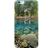 mangrove trees above waterline and coral reef underwater iPhone Case/Skin