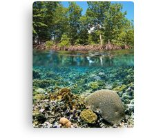 mangrove trees above waterline and coral reef underwater Canvas Print