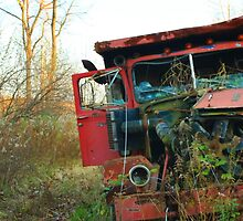 Old Broken Down Truck by molicophoto