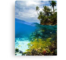 Shoal of fish and tropical shore with coconut trees Canvas Print