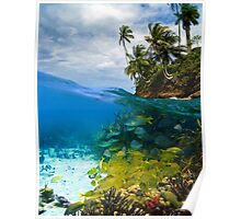 Shoal of fish and tropical shore with coconut trees Poster