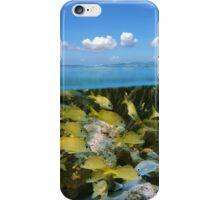 Tropical fish in a coral reef and blue sky with clouds iPhone Case/Skin