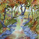 Afon Wybrnant by Anne Bonner