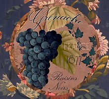 Wines of France Grenache by mindydidit