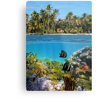 Colorful marine life underwater and tropical coast Metal Print