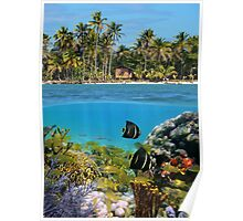 Colorful marine life underwater and tropical coast Poster