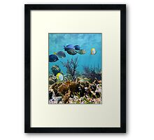 Caribbean seabed with coral and tropical reef fish Framed Print