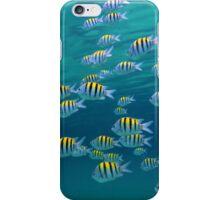 School of Sergeant-major fish near water surface iPhone Case/Skin