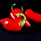 Red Hot Chili Peppers by Dana Roper