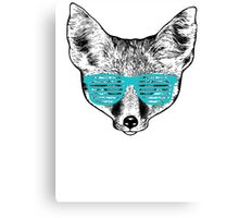 Mr. Fox Canvas Print