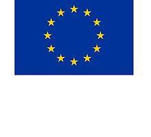 European Flag, EU, Euro, Flag of Europe, European Union, Flag, Brussels by TOM HILL - Designer