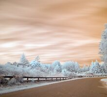 Geyser road in infrared 2 unaltered by Paul Mercer