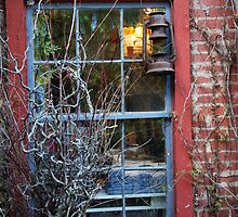 Rabbit Hash - A Nice Place To Live by Jeanne Sheridan