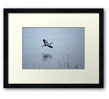 Floating Along Framed Print
