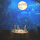 The Moon  by sky   princess